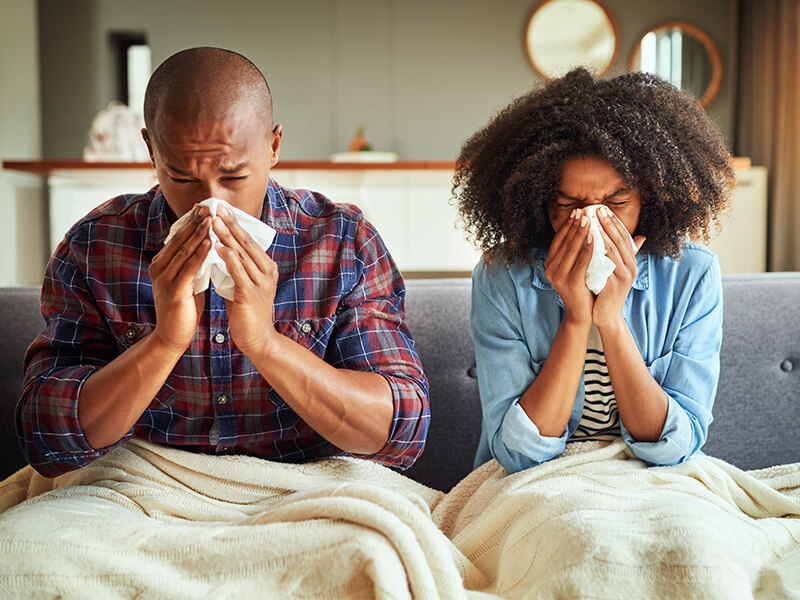 herbs for colds and flu